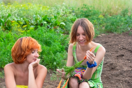 Two farmer woman on the vegetable garden