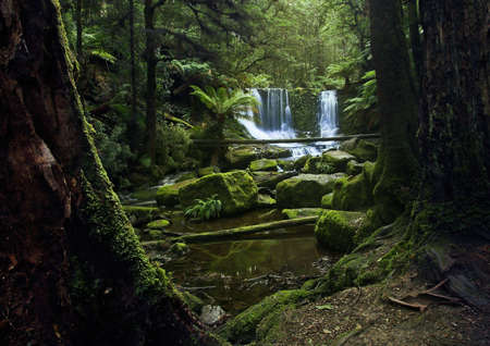 Waterfall in National Park in Tasmania, in summer