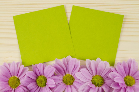 Blank green cards and pink flowers on wooden background photo