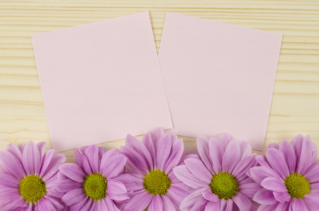 Blank pink cards and pink flowers on wooden background photo
