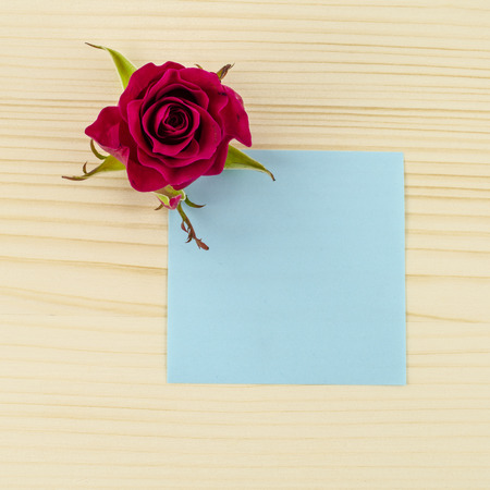Blank blue paper and rose flower on wooden background photo