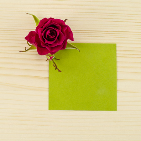 Blank green paper and rose flower on wooden background photo