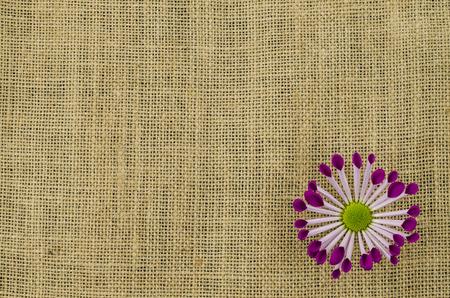 Kleurrijke bloem op linnen achtergrond
