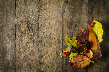 text space: Autumn leaves background