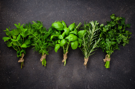 green plants: Fresh herbs on dark background Stock Photo