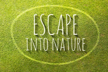 Escape into nature on green grass poster, illustration of natural life illustration