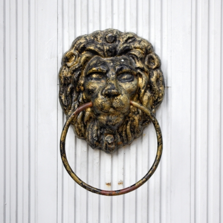 Lion door knocker on white door photo