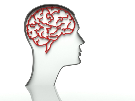 Head profile with brain on white background, text space photo