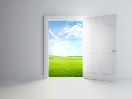 3d open door in empty room, landscape view photo