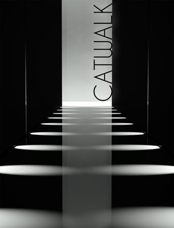 fashion catwalk: Dark design, fashion catwalk runway background Stock Photo