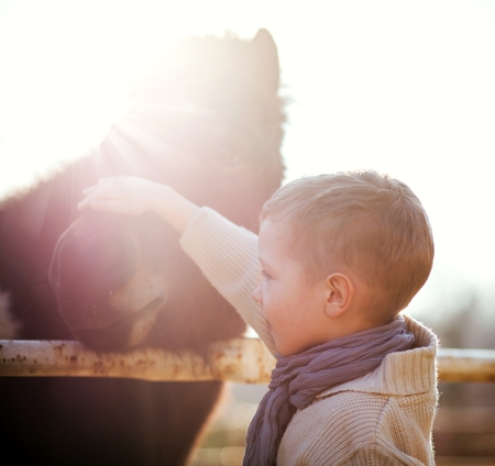 okşayarak: Mini hayvanat bahçesi, aşk ve sevgi Çocuk okşayarak pony