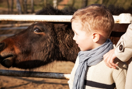 helpfulness: Child with his mother and pony in the mini zoo Stock Photo