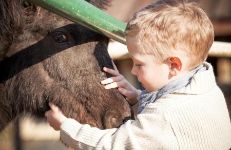 animales del zoologico: Niño con el potro en el mini zoo