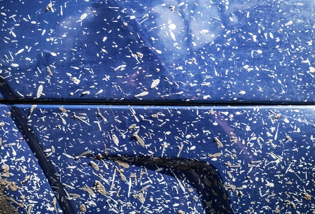 driving conditions: Off-road Car body in mud, texture surface