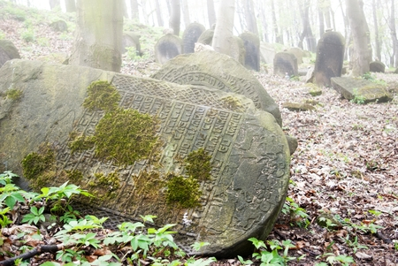 judaical: Old abandoned jewish cemetery in forest Stock Photo