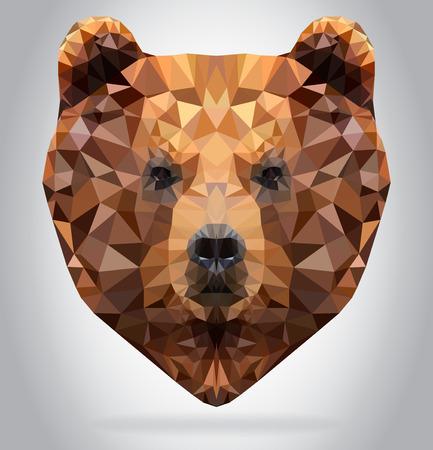 Grizzly Bear head vector isolated, geometric modern illustration Ilustração