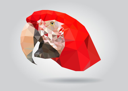 king parrot: Macaw Parrot head vector isolated, geometric modern illustration