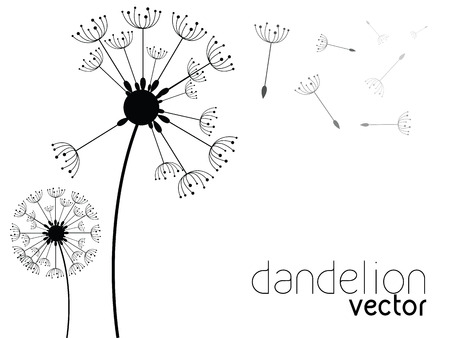 winterly: Dandelion on wind vector background Stock Photo