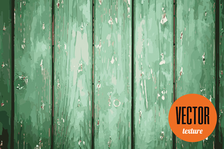 Vector green wooden planks texture, grunge background Stock Photo