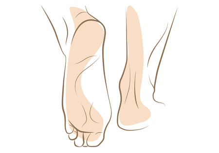 girls feet: Woman foot sketch, drawn in vector lines