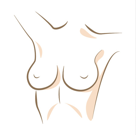 Close up woman breasts, drawn in vector lines Illustration