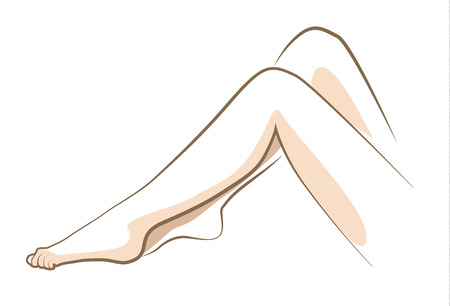 Close up woman legs, drawn in vector lines Illustration