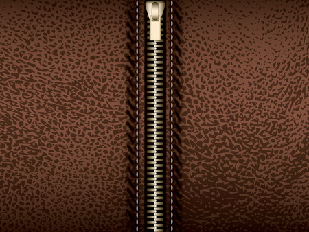 brown leather: Brown leather with zipper, vector part of clothes