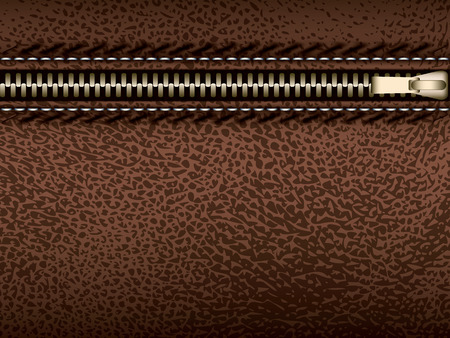 Brown leather with zipper, vector part of clothes