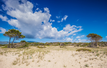 zakynthos: Desert or sandy dunes in hot summer day, Zakynthos Greece