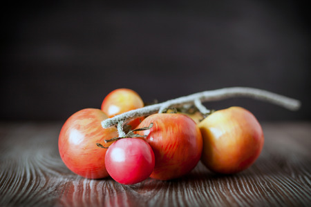 ingradient: Tomatoes on branch. Wooden board dark background, front view Stock Photo
