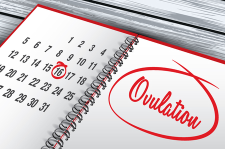 infertile: Ovulation Day mark on calendar vector illustration Illustration