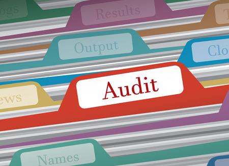 categorize: Audit folder in file folders personal finance, vector illustration