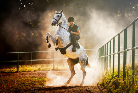 Woman riding a horse in sand dust, beautiful pose on hind legs