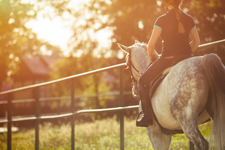 Woman riding a horse on paddock, horsewoman sportswear