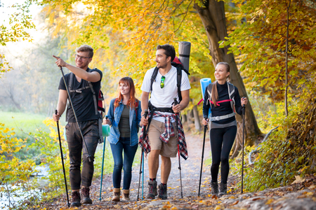 riends with backpacks trekking in nature, walking through the woods 写真素材