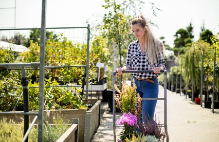 Customer pushing the trolley between the rows of plants in garden center Reklamní fotografie