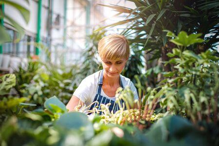Smiling employee during work in garden center 写真素材
