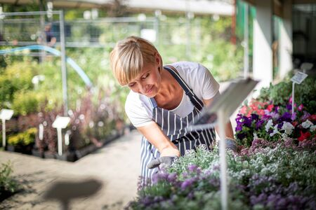 Gardener during work in garden center