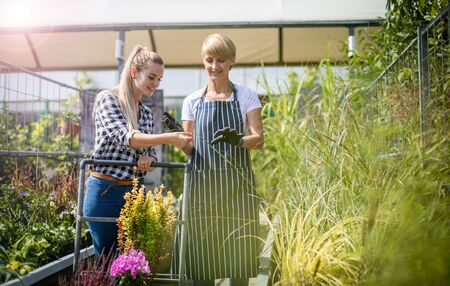 Gardener woman advising female client during buying flowers in the garden center