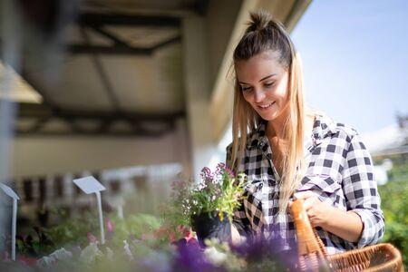The garden center customer chooses plants to buy Stockfoto