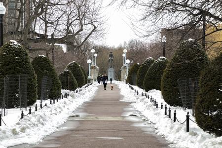 Winter in the Boston Garden