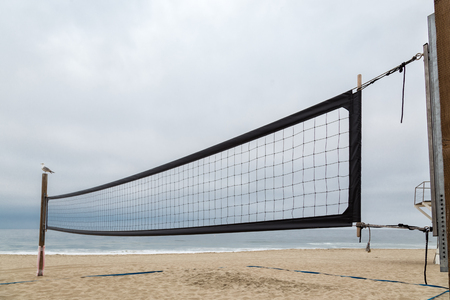 The Volleyball Net