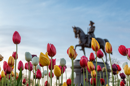 Statue of George Washington in Spring Stock Photo