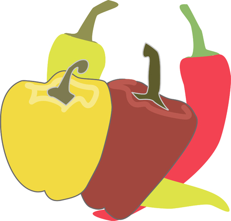four yellow and red peppers Vector illustration.