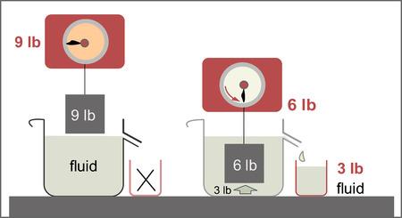 Le principe d'Archimède comme loi de la physique fondamentale à la mécanique des fluides