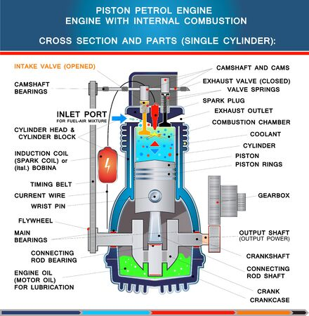 Piston petrol engine, structural cross section in basic design for education Illustration