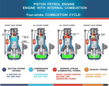 Piston petrol engine, structural cross section and four stroke combustion cycle in basic design for education