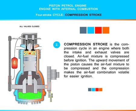 Piston engine petrol four stroke cycle in structural cross section for education