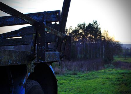 the last remnants of an old weathered trailer with a birch grove in the background