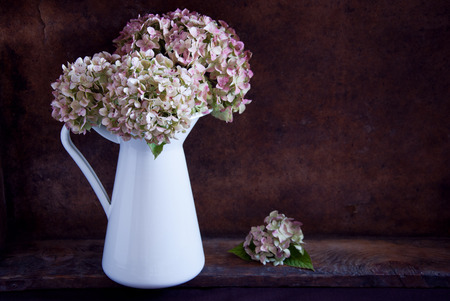 dried flower arrangement: Dried hydrangea flowers in a white jug